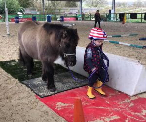 Joey aged 3 learning horse agility with Sandra Williams